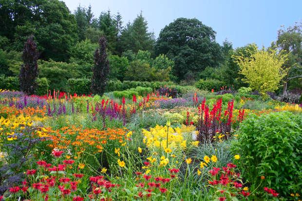 Jardines del corregidor 05 23 12 for Asociacion pinar jardin